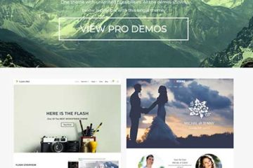 Best free themes for wordpress highly customizable