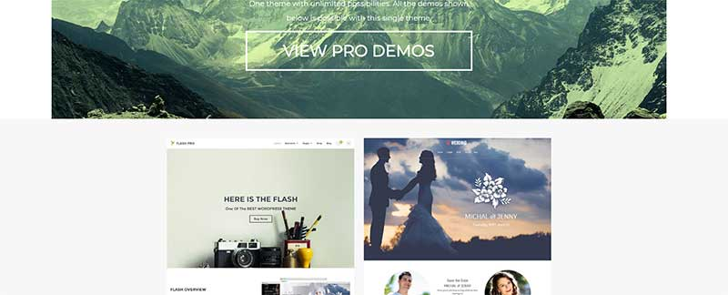 wordpress theme flash easly costumize